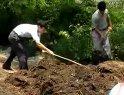 蚯蚓养殖新技术