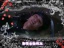 一枝梅插曲MV--银杏树山坡视频
