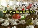 养鸡技术大全04集(微生态发酵床养鸡技术)