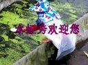 水蛭养殖:精养福寿螺幼螺视频