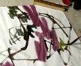 花鸟画技巧2