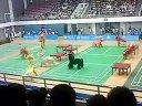 全国大学生羽毛球超级赛