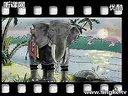 《最后的战象》_2012千课万人教学观摩课视频