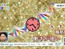 2000万円落下クイズ!マネードロップ 動画~2013年1月10日
