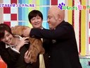 スクール革命! ほっしゃん。&倉科カナ「聞いて驚き!知られざる動物の世界」 動画~2013年1月20日