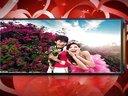 201301情人节浪漫婚恋婚庆震撼视频片头模板 会声会影X5 QQ:820030800