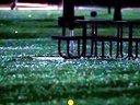 萤火虫之舞 Dance Of Fireflies Various Artists