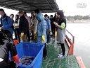 上海莘庄放生护生群2013年3月17日上船放生河蚌花鲢草鱼视频