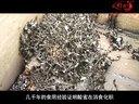 小黑蜂蜂蜜视频