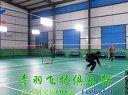 2014.1.13赵vs李(青州羽毛球俱乐部-青羽飞扬)