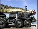 世界上最大的蛇在红海被捕获 HINDI MOVIE WWE