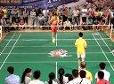 羽林争霸2014红牛羽毛球河池点决赛第5局男单(通力装饰vs柳钢)