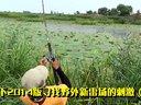 2014拍天下路亚黑鱼寻雷的刺激(三)重草中的重草视频