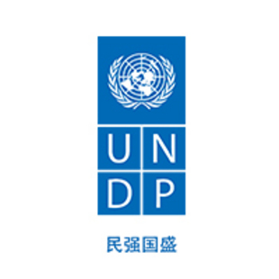 联合国开发计划署