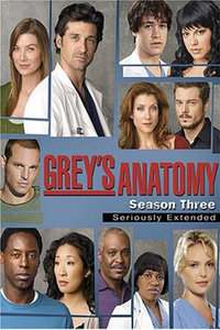实习医生格蕾 第三季