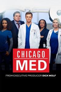 芝加哥医院第二季