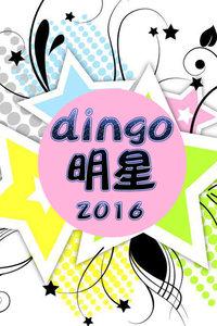 dingo明星2016