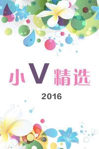 小V精选2016