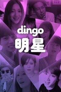 dingo明星2017