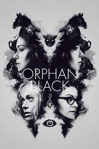 《黑色孤儿 第四季》