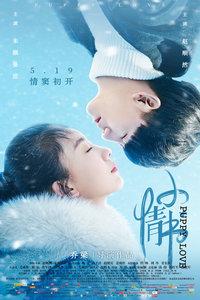 小情书(2017)