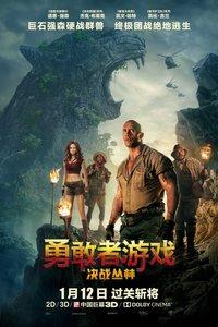 勇敢者游戏:决战丛林