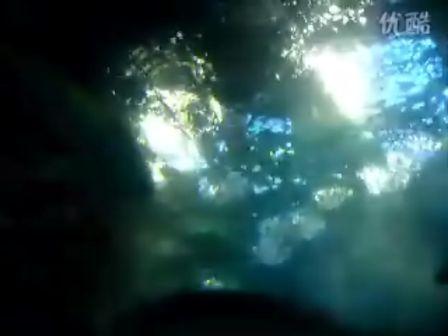 水彩星空图片有动物