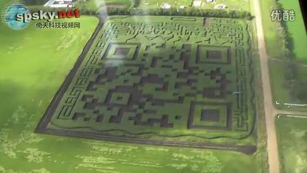 惊奇!加拿大农民玉米地种出2.8万平方米二维码