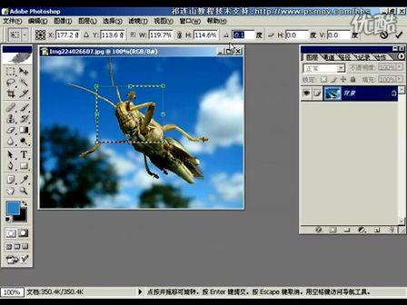 Photoshop从头学起第84集