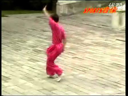 佛掌罗汉拳 武侠电影 血战少林寺 奇门鬼谷