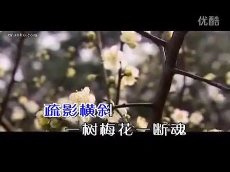 梅花引 廖昌永 ktv