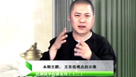 视频课堂:国学堂 王东岳观点启示录