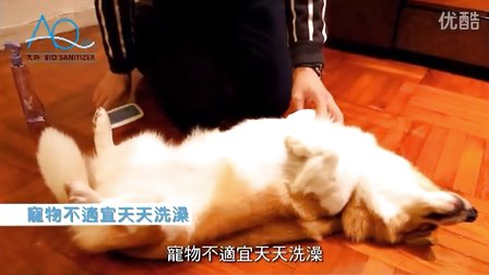 AQ 天涤生物制剂 - 宠物篇
