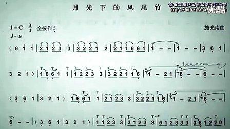 葫芦丝演奏 月光下的凤尾竹 ,专业的就是不一样 好听
