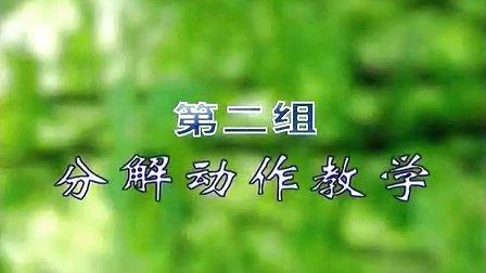 式陈式太极拳_38式陈式太极拳书光盘