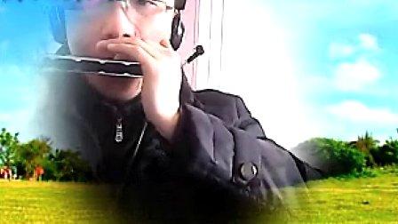 布鲁斯口琴曲 布鲁斯口琴教学 布鲁斯口琴送别 卡农布鲁斯