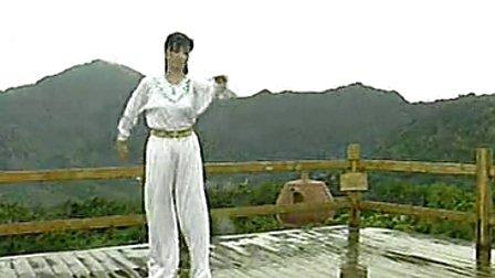 应美凤木兰拳六路[双剑]演示-速度:《应美风老服装滑冰中国专辑图片
