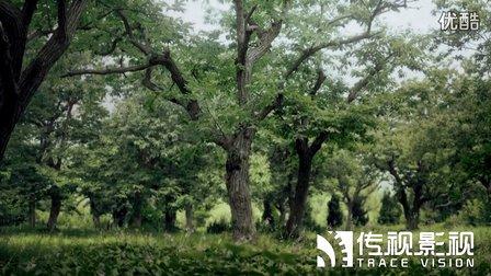 传视影视_传视影视集团版图再扩张北京子公司的选址已