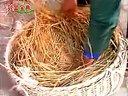 养鹅(肉鹅养殖)养殖技术-农业推广