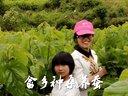 【武义拍客】14051武义畲乡种桑养蚕