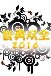 智勇双全2016