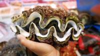 『巨蛤 & 巨型海螺』 日本沖繩街頭美食