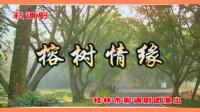 彩調劇《榕樹情緣》徐東 謝春艷