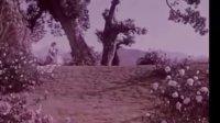 經典優秀國產影片《阿詩瑪》
