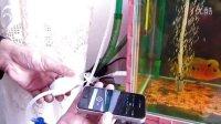 丹東市內-出售1.3W電磁波氧氣泵-訂做魚缸蓋《供求信息》視頻介紹