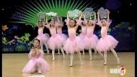 幼儿舞蹈教学视频 追梦
