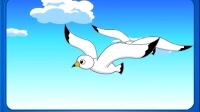 151 海鷗為什么總是追著輪船飛 海鷗為什么總是追著輪船飛