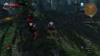 《巫師3》炫酷bug 身體飛天如在月球 (2)