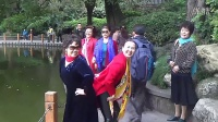 人民公園觀賞菊展之二
