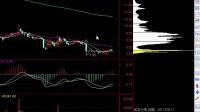 视频:基础数据指标 股市个股技术分析